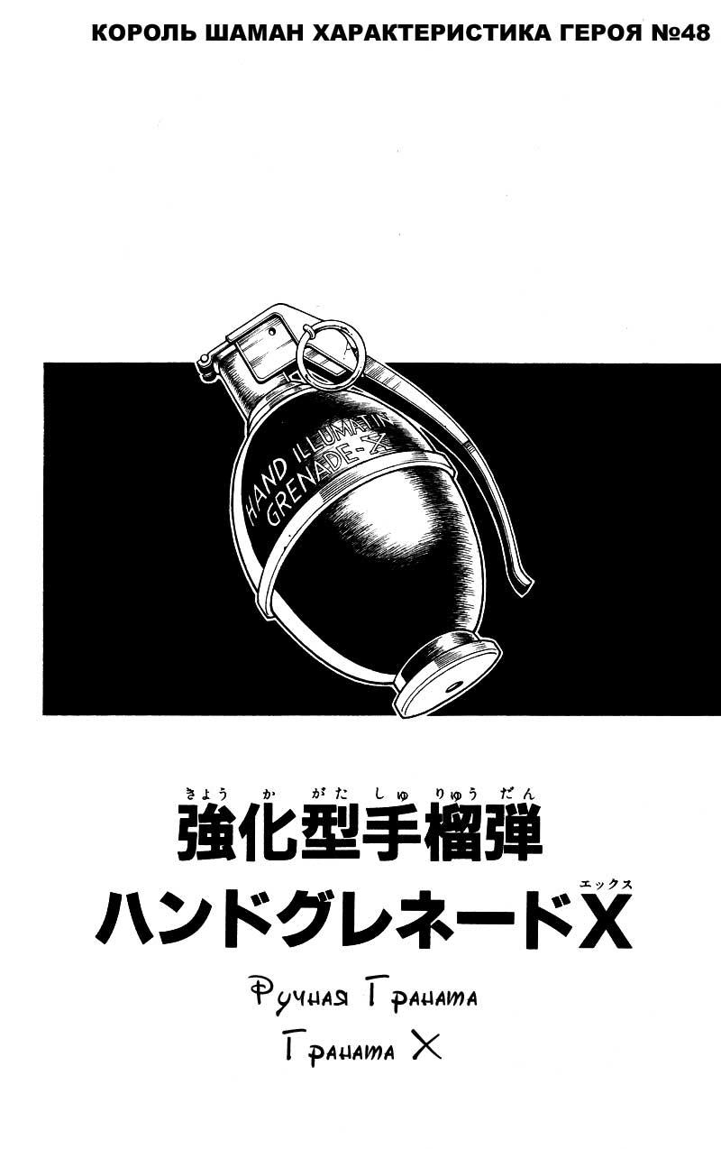 Манга Король-шаман / Shaman King  - Том 16 Глава 140 Страница 19
