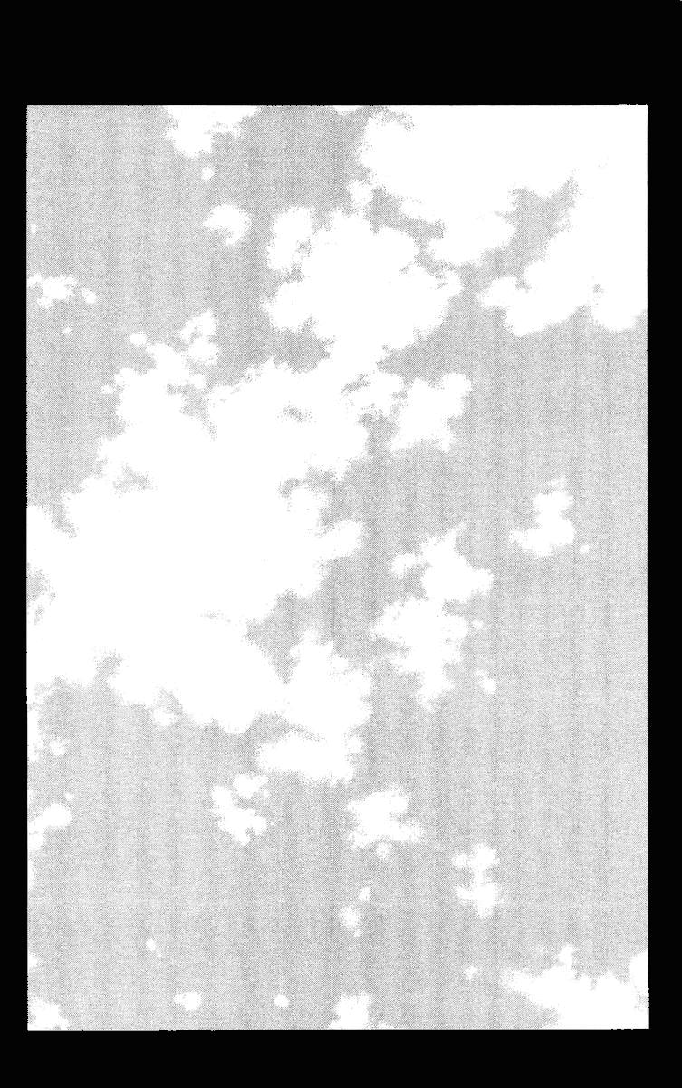 Манга Король-шаман / Shaman King  - Том 19 Глава 163 Страница 2