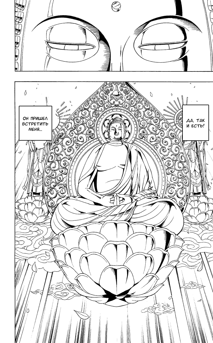Манга Король-шаман / Shaman King  - Том 22 Глава 189 Страница 19