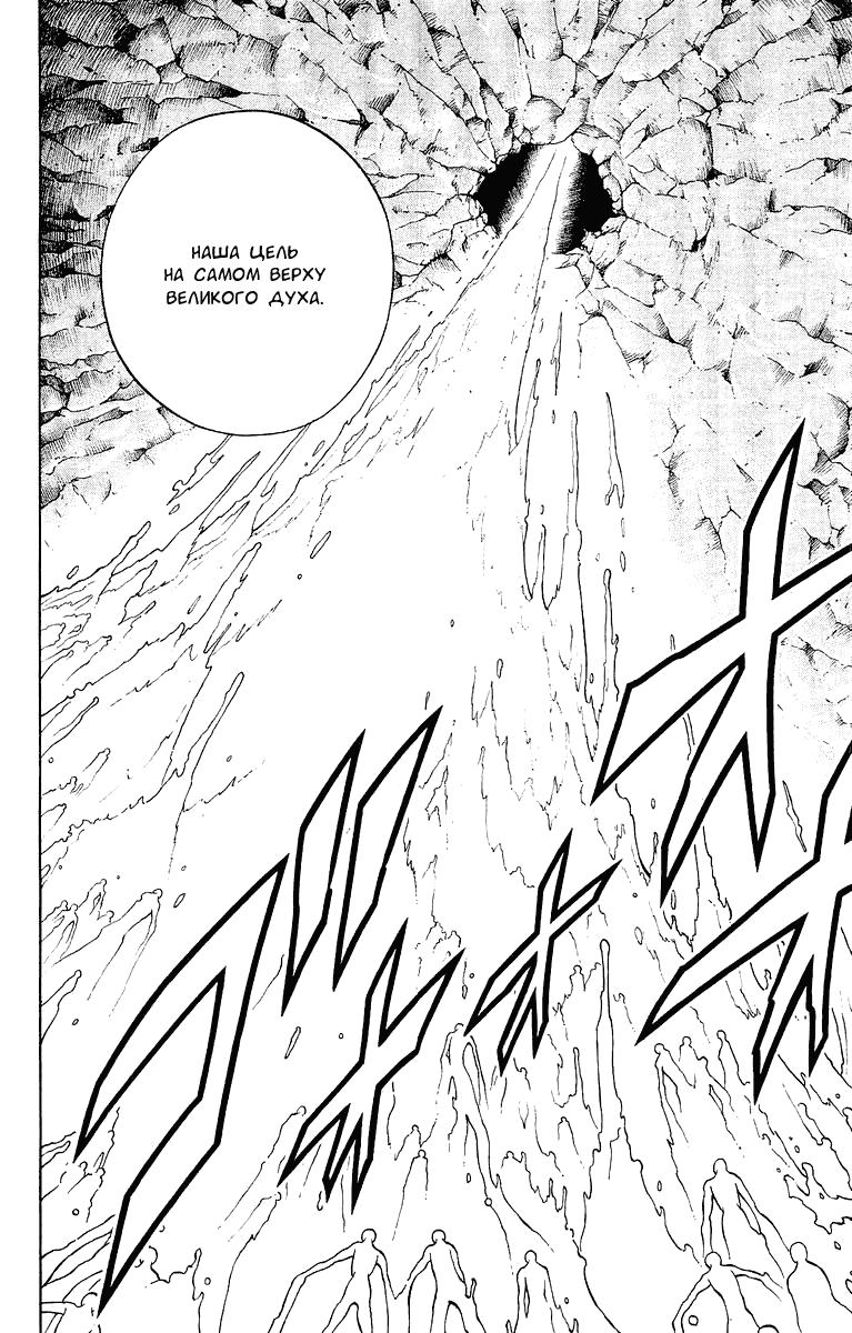 Манга Король-шаман / Shaman King  - Том 22 Глава 195 Страница 2