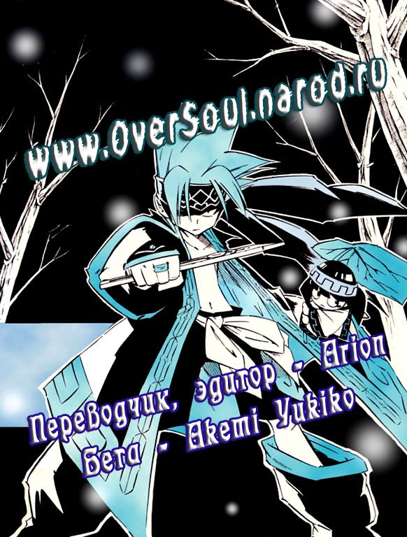 Манга Король-шаман / Shaman King  - Том 23 Глава 204 Страница 22