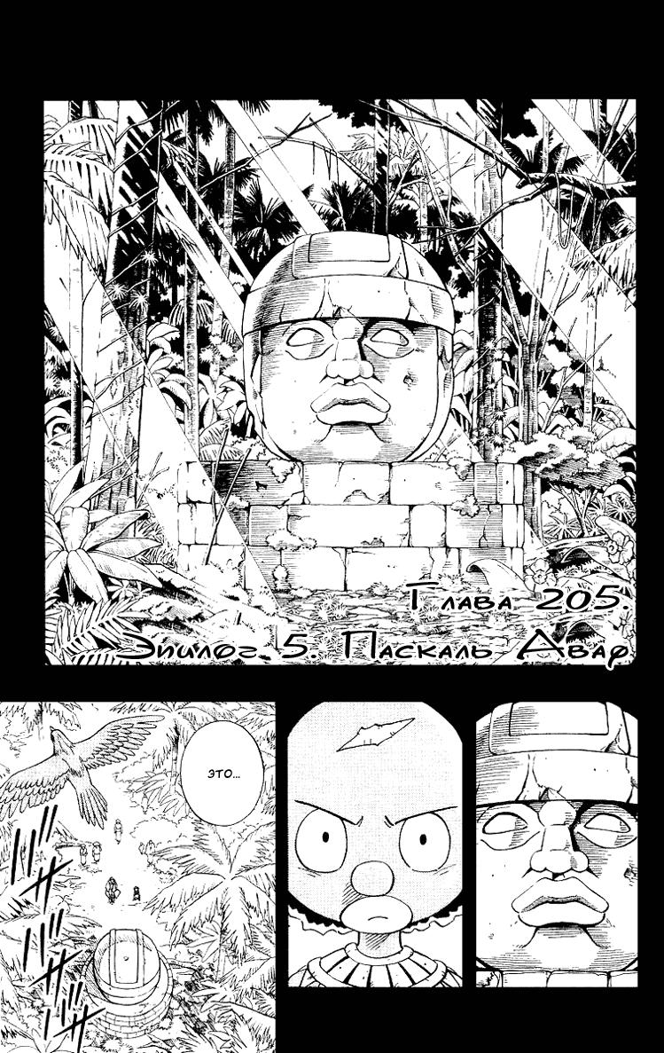 Манга Король-шаман / Shaman King  - Том 23 Глава 205 Страница 1