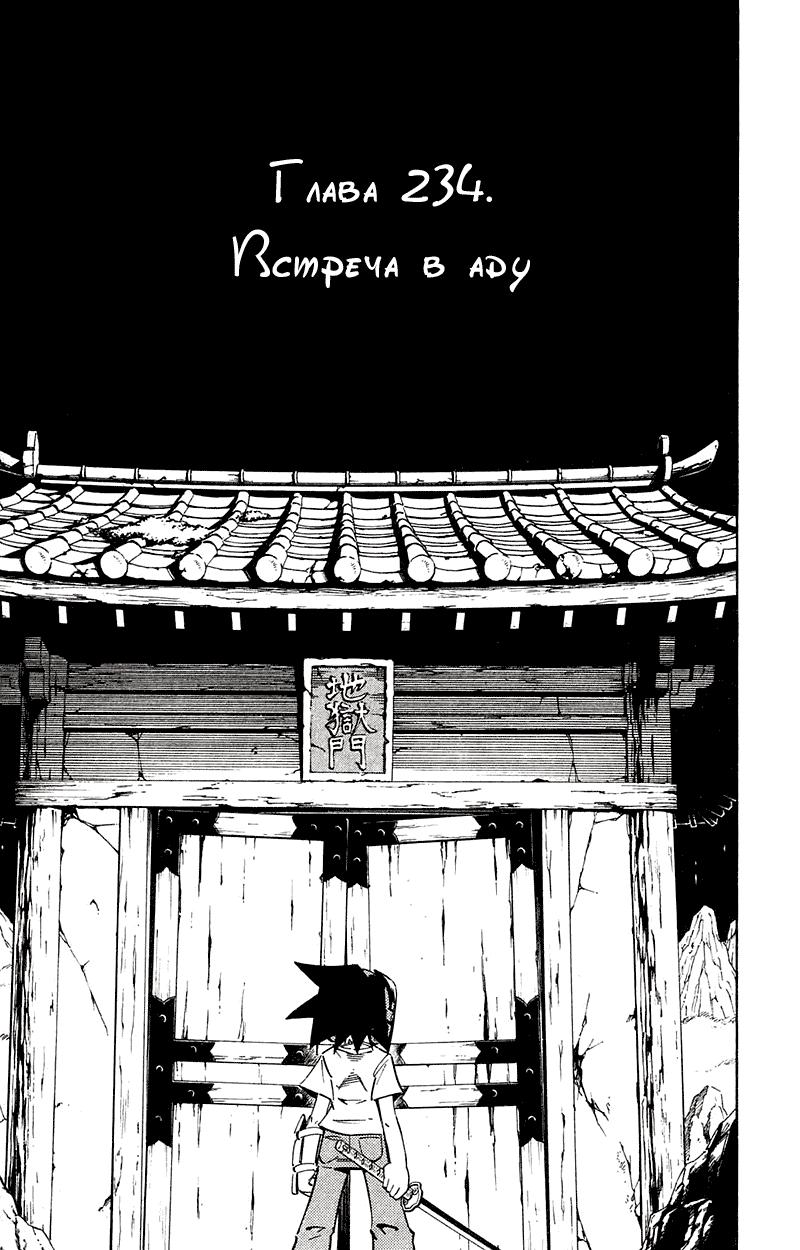 Манга Король-шаман / Shaman King  - Том 27 Глава 234 Страница 11