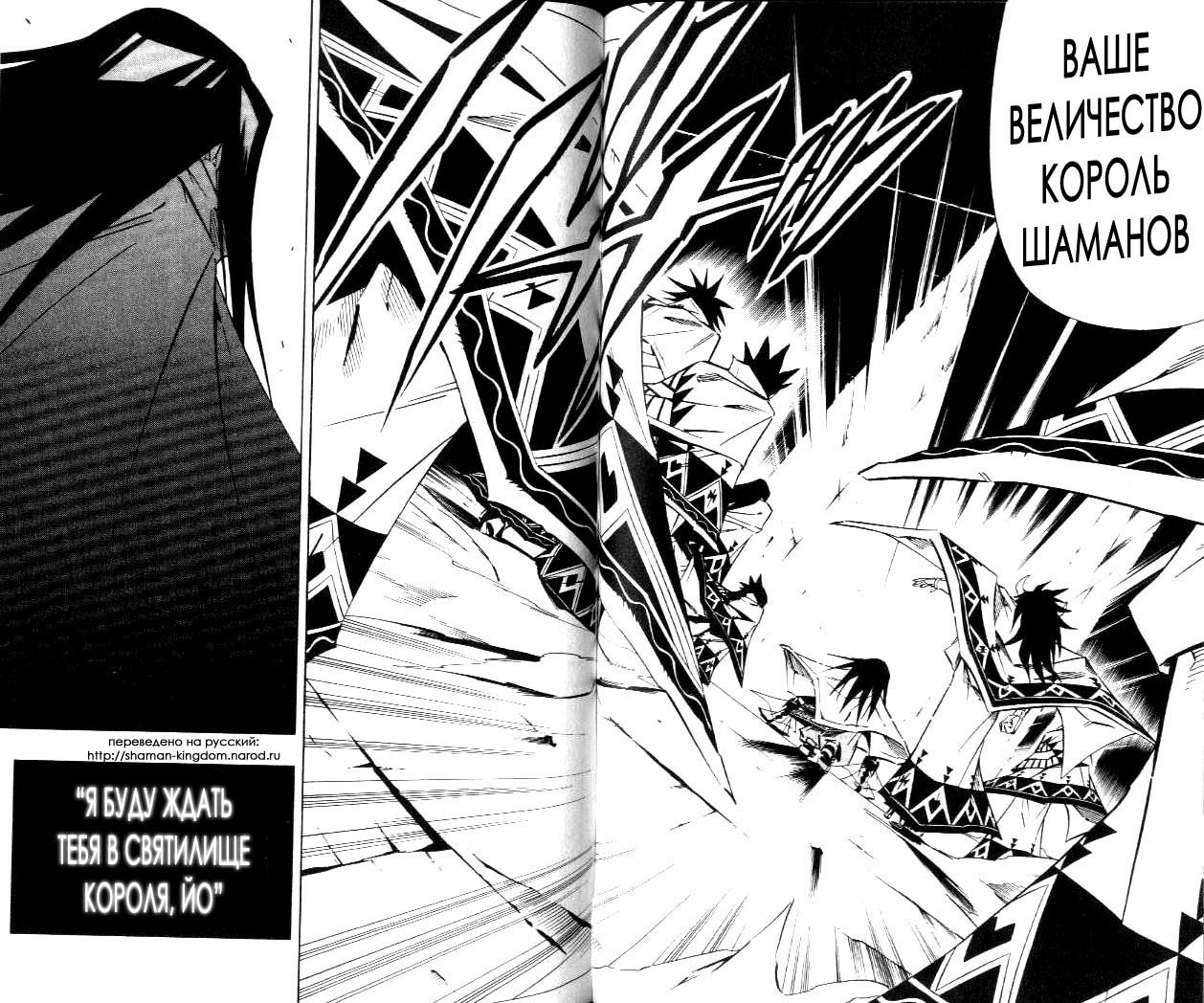 Манга Король-шаман / Shaman King  - Том 30 Глава 264 Страница 12