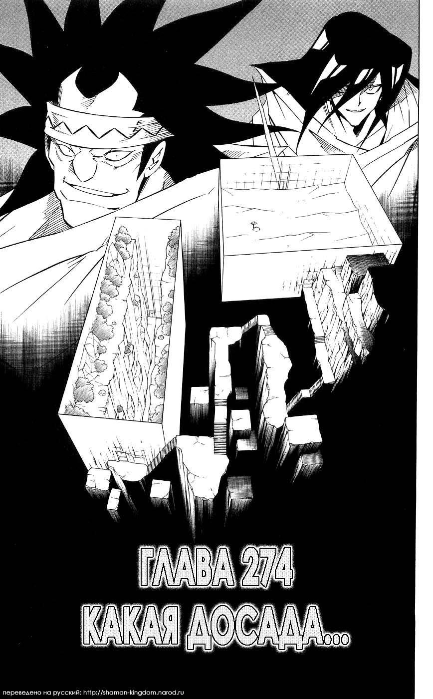 Манга Король-шаман / Shaman King  - Том 31 Глава 274 Страница 3