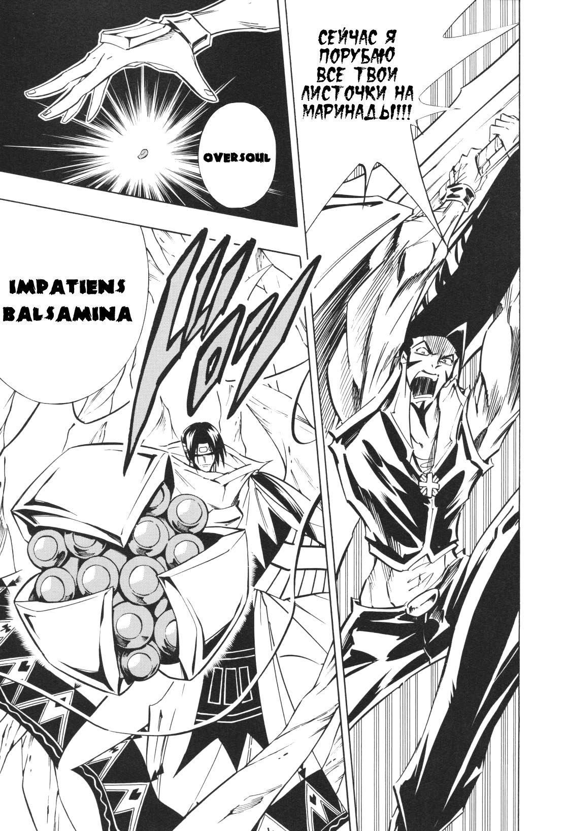 Манга Король-шаман / Shaman King  - Том 33 Глава 292 Страница 18